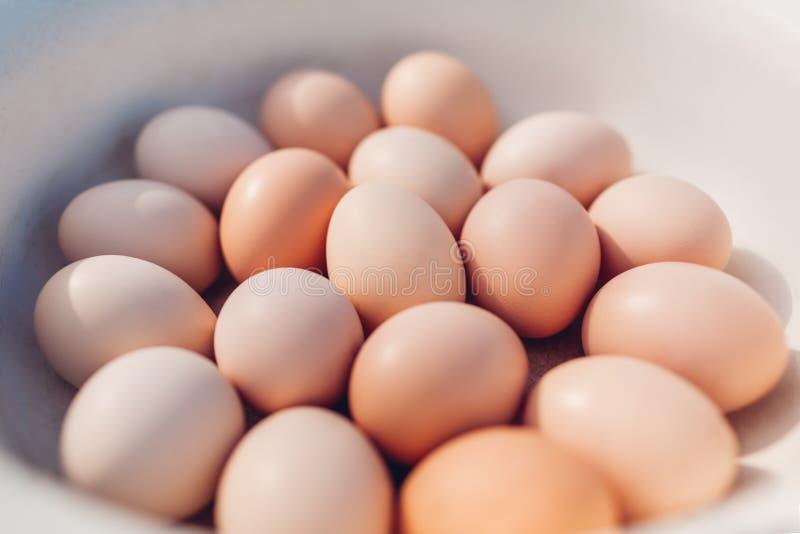 Verse die eieren in kom worden verzameld Biologisch product voor het gezonde eten royalty-vrije stock foto's