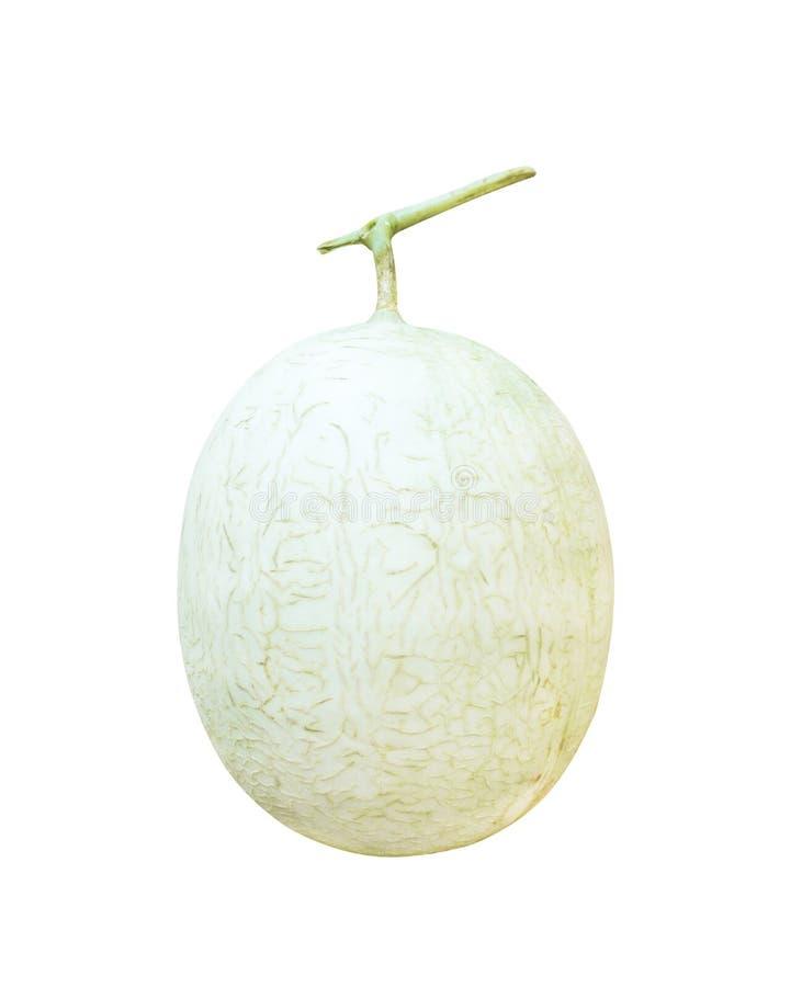 Verse die kantaloepmeloen op de witte achtergrond met het knippen van verticale weg wordt geïsoleerd, royalty-vrije stock afbeeldingen
