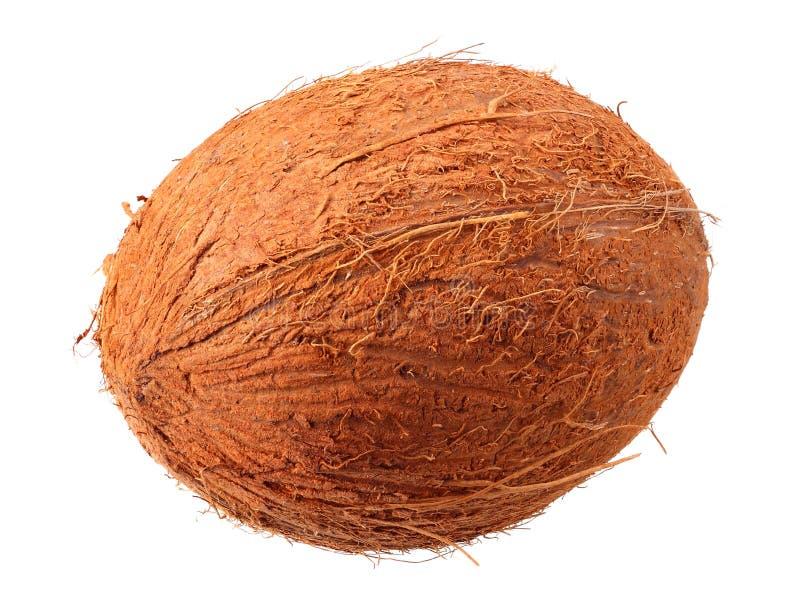 verse die kokosnoot op een witte achtergrond wordt ge?soleerd royalty-vrije stock afbeelding