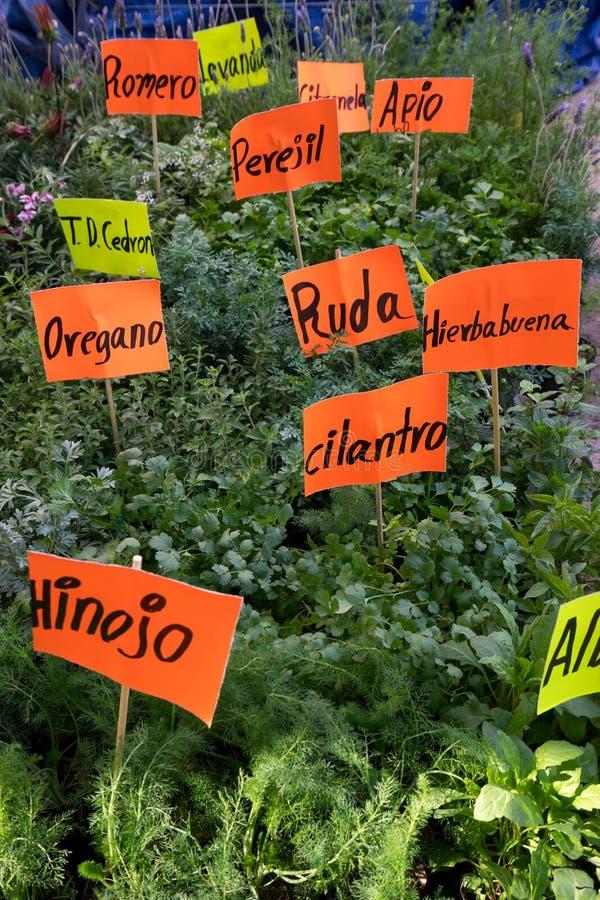Verse die kruiden in het Spaans in Mexico worden geëtiketteerd royalty-vrije stock afbeeldingen