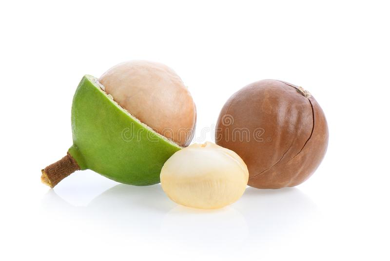 Verse die macadamia noten op witte achtergrond worden geïsoleerd royalty-vrije stock fotografie