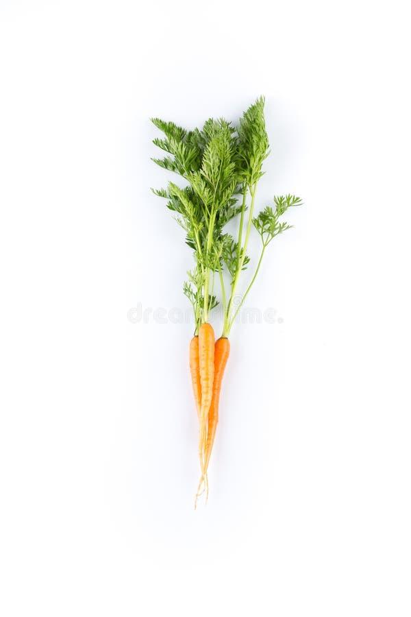 Verse die wortelen op witte achtergrond worden geïsoleerd stock foto's