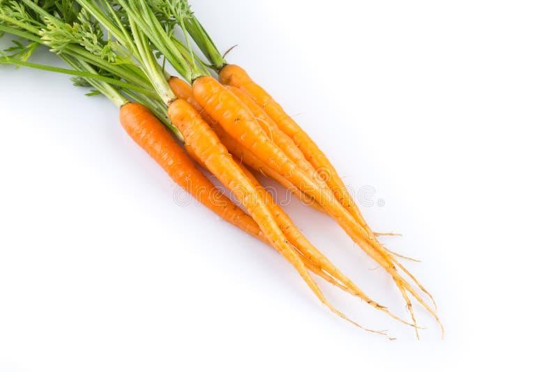Verse die wortelen op witte achtergrond worden geïsoleerd stock afbeelding