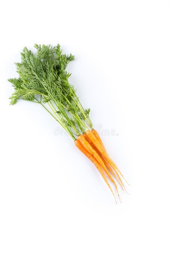 Verse die wortelen op witte achtergrond worden geïsoleerd stock foto