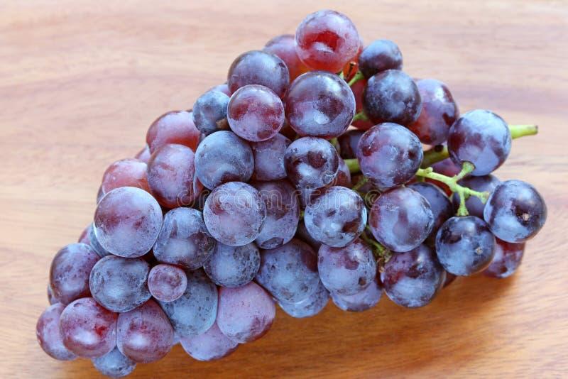 Verse Druiven om rode wijn te maken stock fotografie