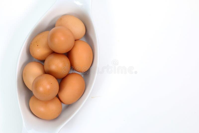 Verse eieren royalty-vrije stock foto's