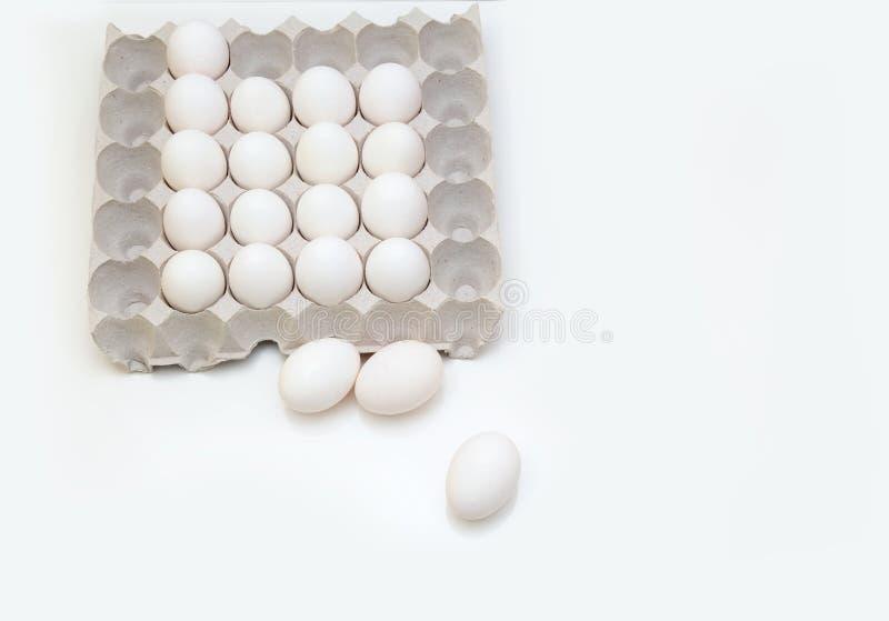 Verse eieren in een dienblad royalty-vrije stock afbeeldingen