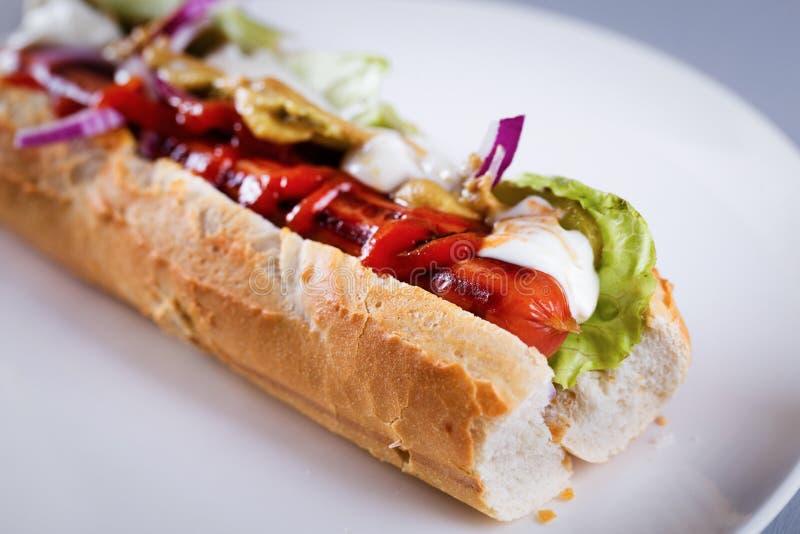 Verse eigengemaakte hotdog stock fotografie