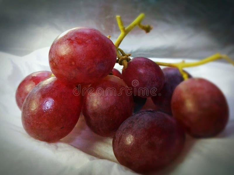 Verse en gezonde druivenvruchten stock afbeelding