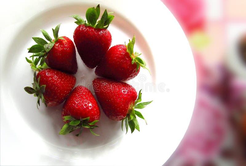 Verse en natte aardbeien op een witte plaat, close-up royalty-vrije stock fotografie