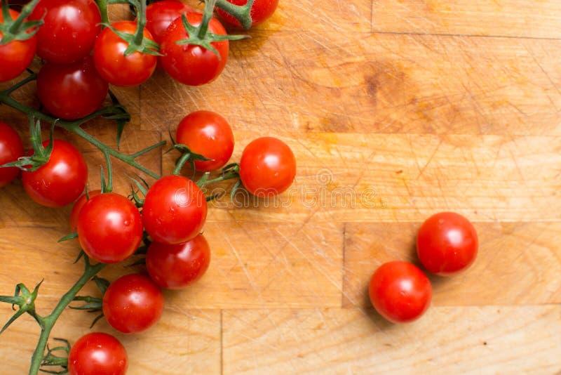 Verse en rijpe wijnstoktomaten, tomaat op de wijnstok royalty-vrije stock afbeelding