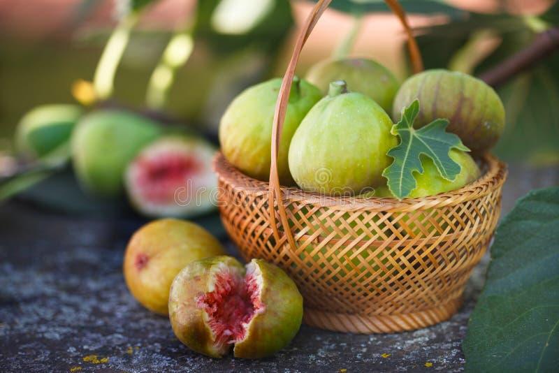 Verse fig. in rieten mand royalty-vrije stock foto