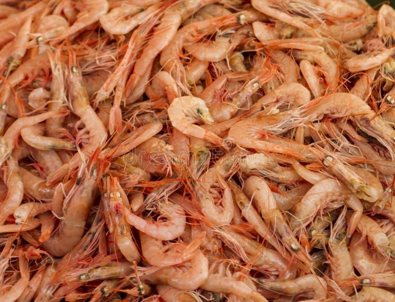 Verse garnalen in de vissenmarkt royalty-vrije stock afbeelding