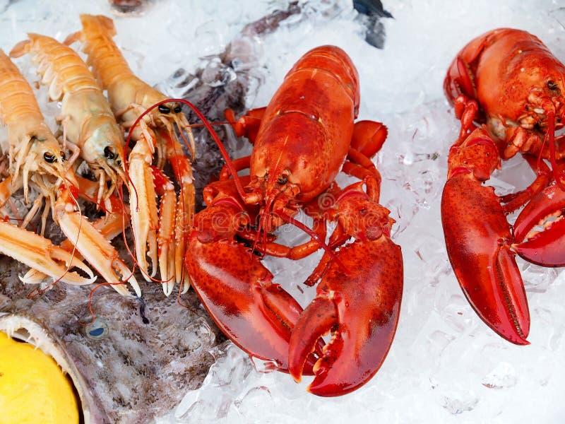 Verse gastronomische zeevruchten met zeekreeften en garnalen stock afbeelding