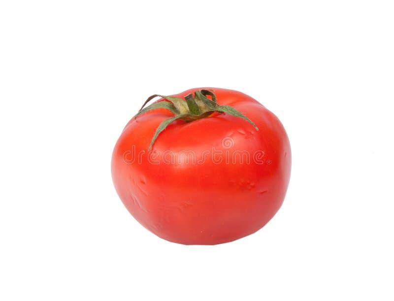 Verse geïsoleerde tomaat stock afbeeldingen