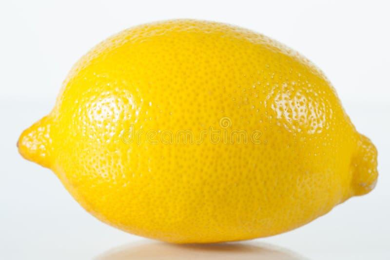 Verse gehele citroen royalty-vrije stock afbeelding