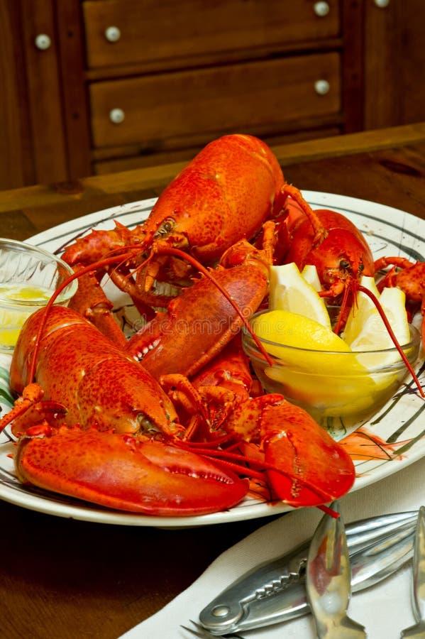 Verse gekookte rode zeekreeft op een dienende schotel stock foto