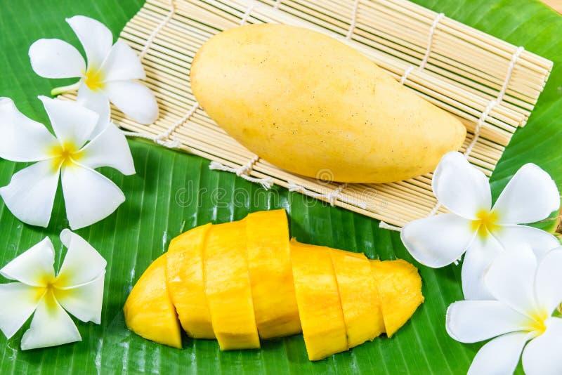 Verse gele mango stock fotografie