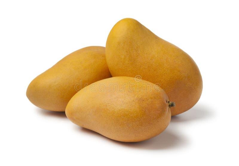 Verse gele mango's stock afbeeldingen