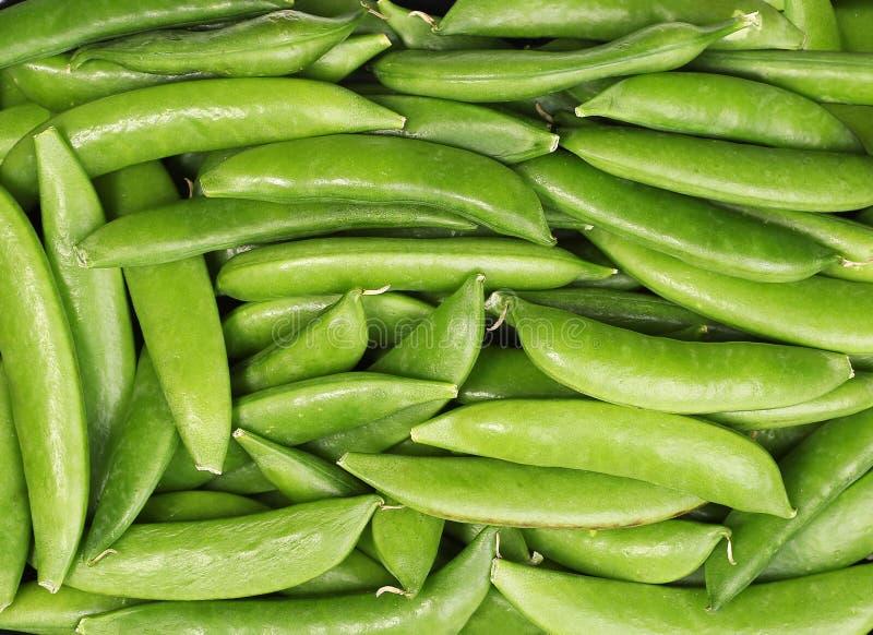 Verse geoogste groene erwten stock afbeeldingen