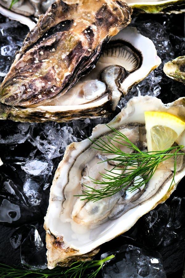 Verse geopende oester met gesneden die citroen als hoogste mening over cru wordt aangeboden stock fotografie