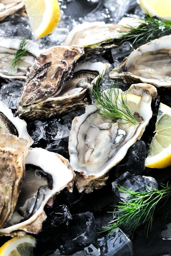 Verse geopende oester met gesneden die citroen als hoogste mening over cru wordt aangeboden stock foto's