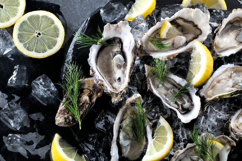 Verse geopende oester met gesneden die citroen als hoogste mening over cru wordt aangeboden royalty-vrije stock afbeelding