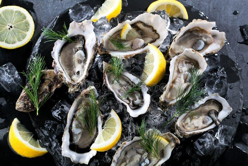 Verse geopende oester met gesneden die citroen als hoogste mening over cru wordt aangeboden stock afbeeldingen