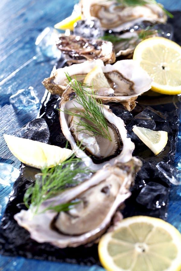 Verse geopende oester met gesneden die citroen als hoogste mening over cru wordt aangeboden royalty-vrije stock fotografie
