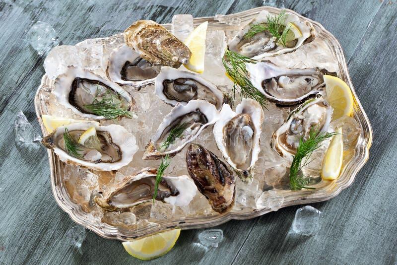 Verse geopende oester met gesneden die citroen als hoogste mening over verpletterd ijs met exemplaarruimte wordt aangeboden royalty-vrije stock fotografie