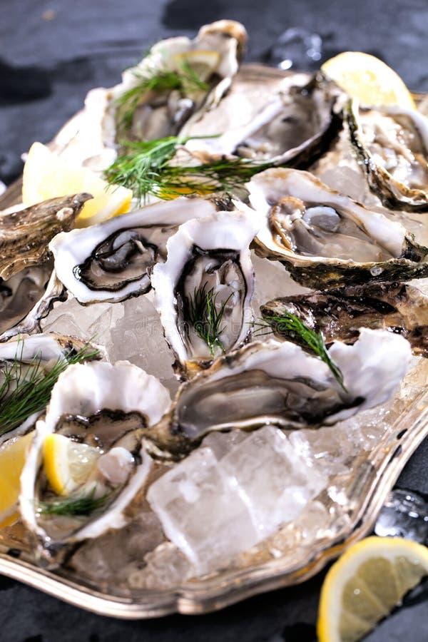 Verse geopende oester met gesneden die citroen als hoogste mening over verpletterd ijs met exemplaarruimte wordt aangeboden stock afbeelding