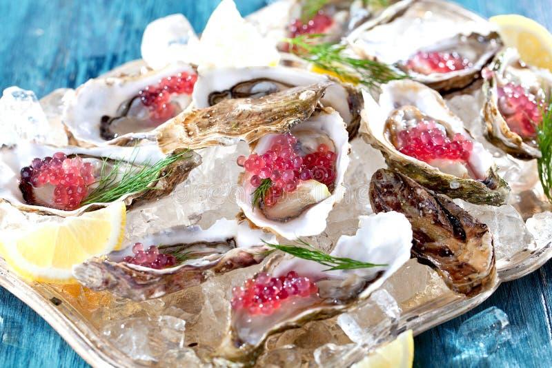 Verse geopende oester met gesneden die citroen als hoogste mening over verpletterd ijs met exemplaarruimte wordt aangeboden stock afbeeldingen