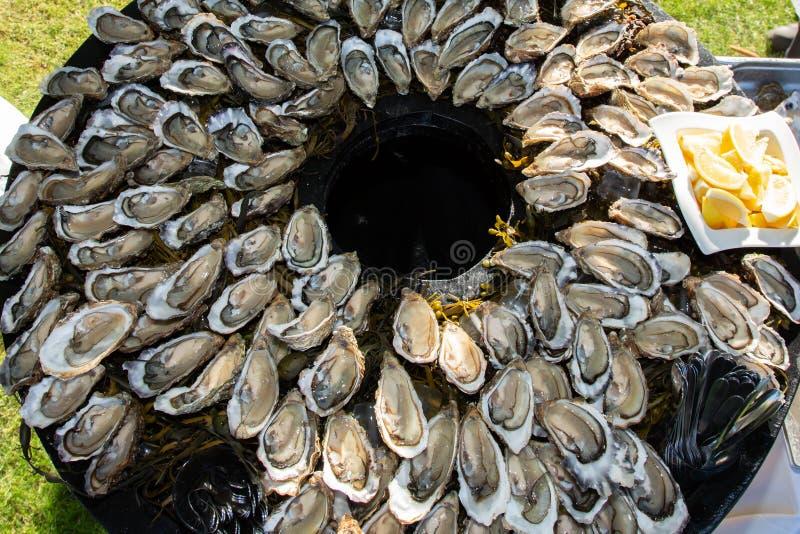 Verse geopende oester van Oleron in hoogste mening tijdens partij in Arcachon Frankrijk stock afbeeldingen