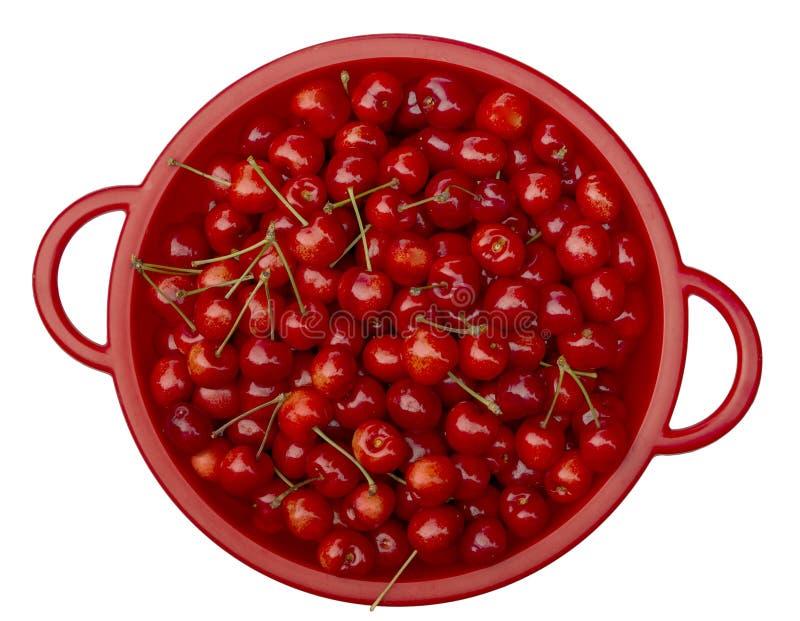Verse geplukte zoete kersen, inlands en organisch Niet perfectioneren alle 100, maar heerlijk zoet en gezond In rood stock foto
