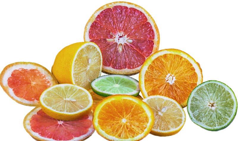 Verse gesneden die citrusvruchten als citroen, kalk, sinaasappel en grapefruit op witte achtergrond wordt geïsoleerd stock afbeelding
