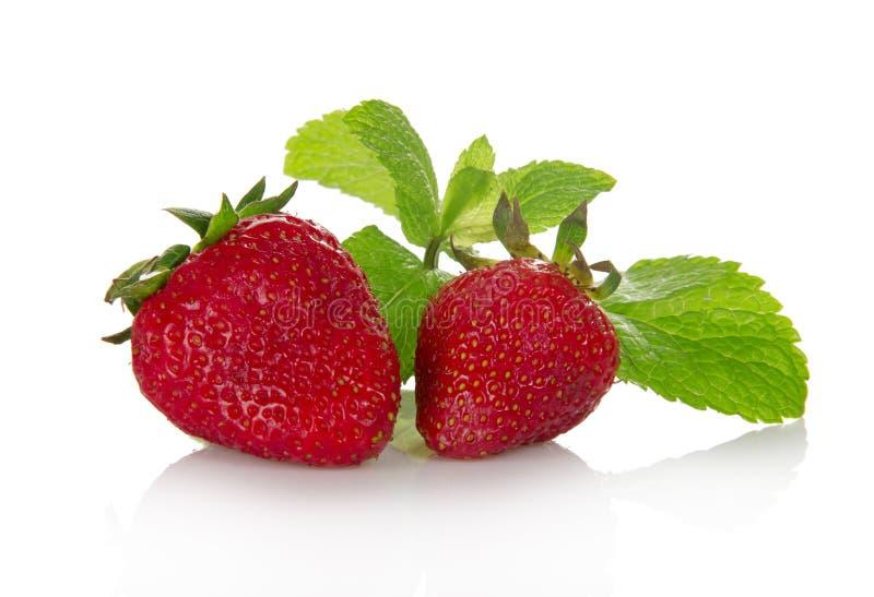 Verse geurige aardbei en de groene muntbladeren stock foto