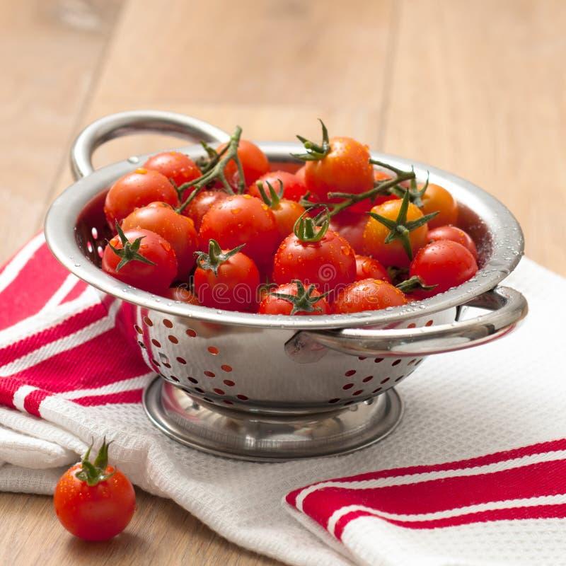 Verse Gewassen Rijpe Tomaten royalty-vrije stock fotografie