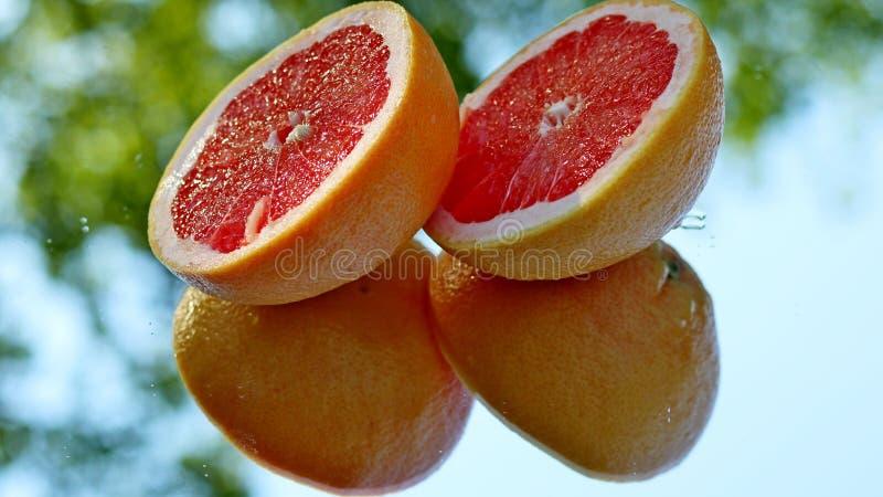 Verse grapefruit halfs met zelfbezinning royalty-vrije stock foto's