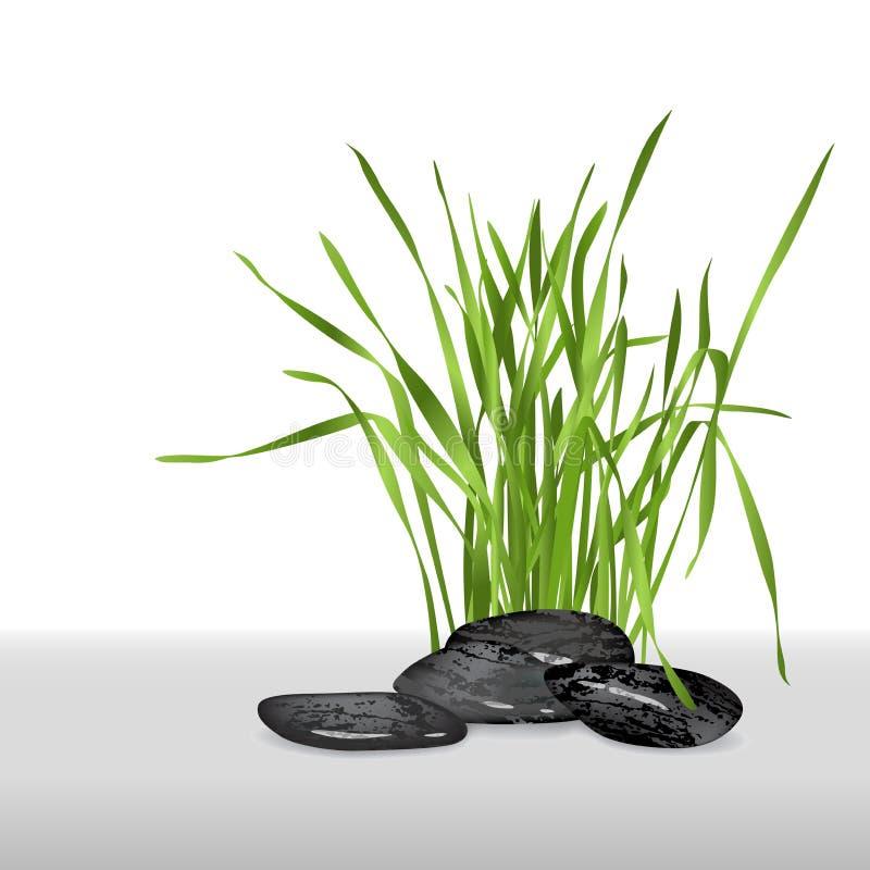 Verse gras en stenen