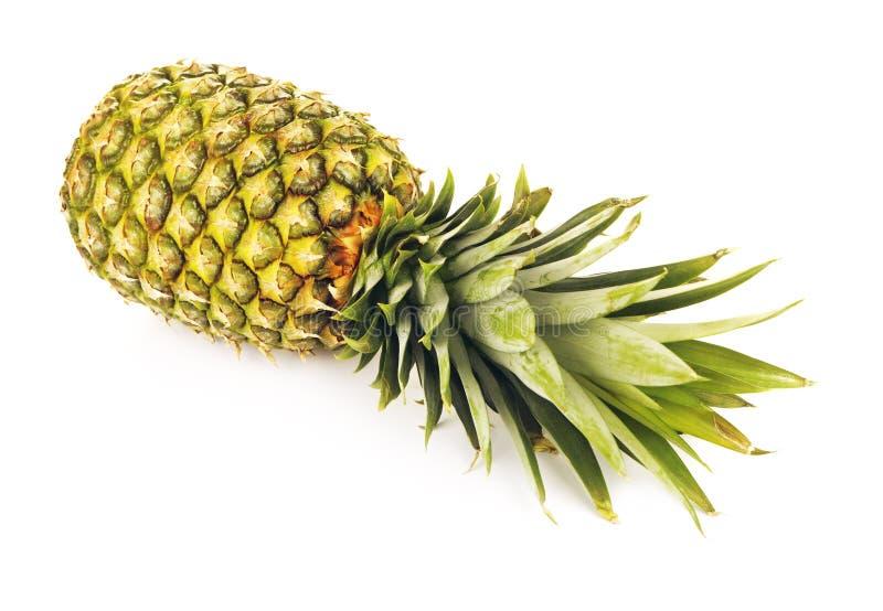 Verse Groene Ananas stock fotografie