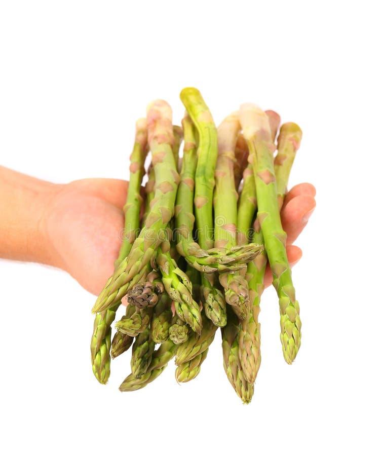 Verse groene asperge op hand. stock foto's
