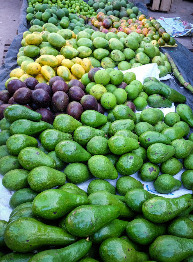 Verse groene avocado op een marktkraam royalty-vrije stock afbeeldingen