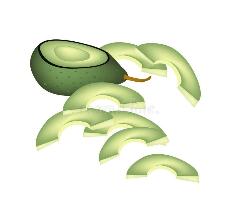 Download Verse Groene Avocado's Op Een Witte Achtergrond Vector Illustratie - Illustratie bestaande uit avocado, geïsoleerd: 39114667