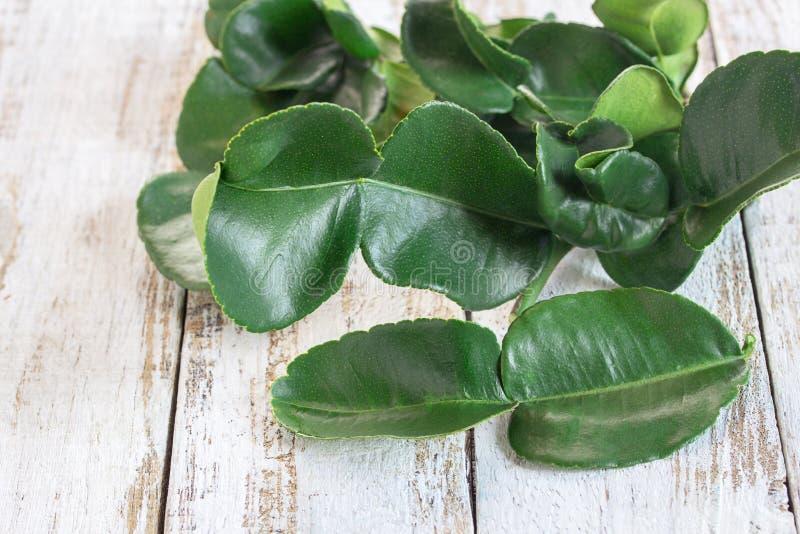 Verse groene bladbergamot op houten lijstachtergrond stock afbeelding