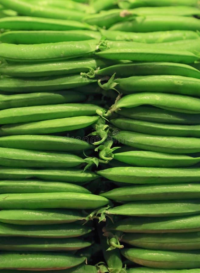 Verse groene erwt royalty-vrije stock fotografie
