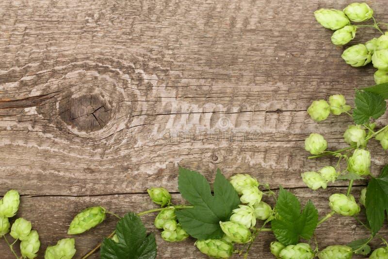 Verse groene hopkegels op oude houten achtergrond Ingrediënt voor bierproductie Hoogste mening met exemplaarruimte voor uw tekst stock foto's