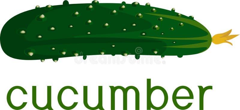 Verse groene komkommer met titel op witte achtergrond vector illustratie
