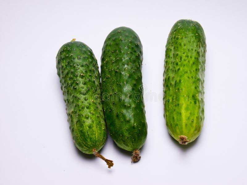 Verse groene Komkommer op witte achtergrond stock afbeeldingen