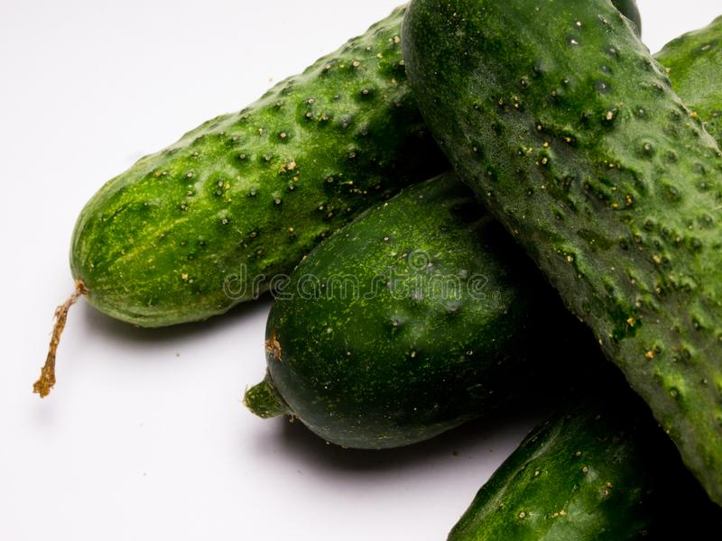 Verse groene Komkommer op witte achtergrond stock fotografie