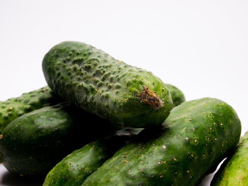 Verse groene Komkommer op witte achtergrond royalty-vrije stock foto's